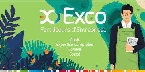 Groupe exco nexiom exco cabinets d 39 expertise comptable - Cabinet d audit et d expertise comptable ...