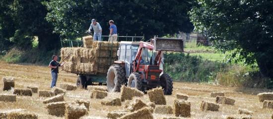 entreprises-agricoles-une-reduction-des-cotisations-patronales-plus-genereuse