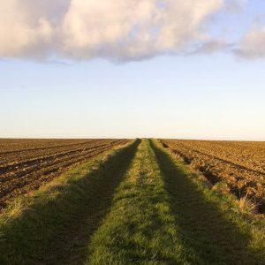 Installation - creation-reprise-de-votre-exploitation-agricole