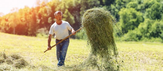 exploitants-agricoles-montant-des-indemnites-journalieres