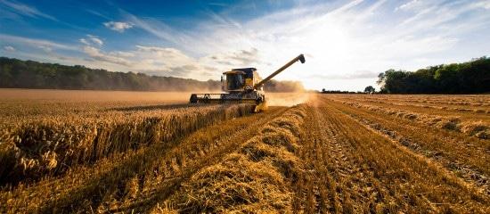 bail-rural:-quand-les-usages-agricoles-s'appliquent