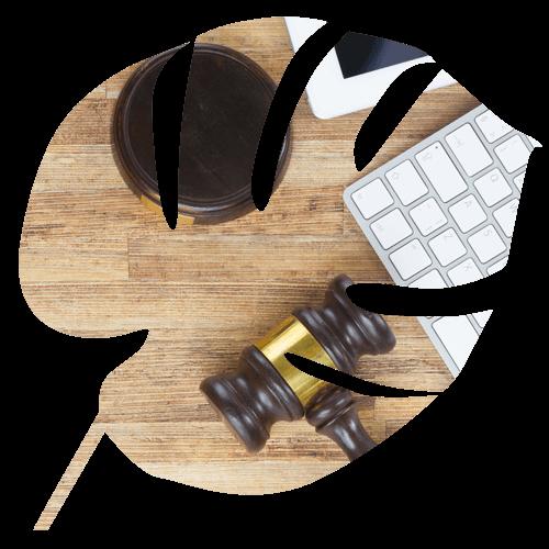 Les qualités requises pour vivre le métier de Juriste chez Exco