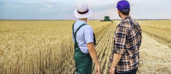 l'obligation-de-cotiser-au-regime-des-non-salaries-agricoles