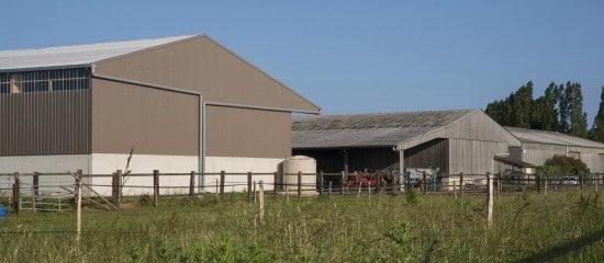 indemnisation-d'un-agriculteur-en-fin-de-bail:-gare-au-respect-des-conditions-requises!