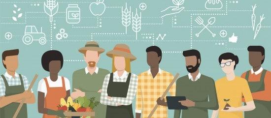 effectif-salarie-de-l'exploitation-agricole:-quoi-de-neuf?