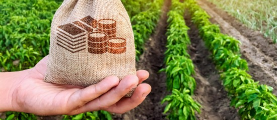 en2017,-les-agriculteurs-ont-gagne,-en-moyenne,-1650e-par-mois