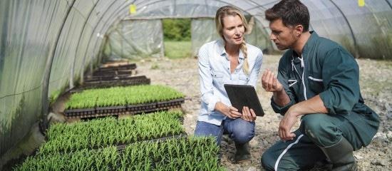 un-report-du-paiement-des-cotisations-sociales-pour-les-agriculteurs
