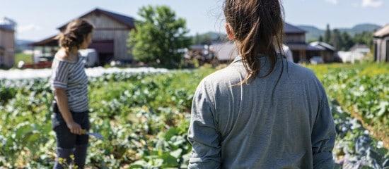 l'agriculture-a-besoin-de-bras