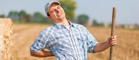 agriculteurs:-dans-quel-delai-declarer-un-accident-du-travail?
