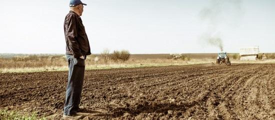 refus-de-renouvellement-d'un-bail-rural-a-long-terme-a-un-locataire-age