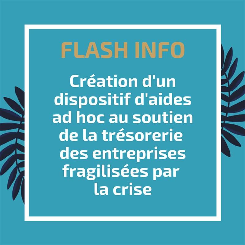 Création d'un dispositif d'aides ad hoc au soutien de la trésorerie des entreprises fragilisées par la crise