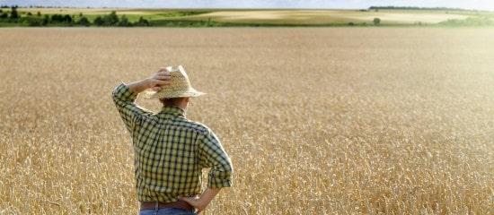 droit-de-preemption-du-fermier-en-cas-de-vente-d'un-terrain-agricole