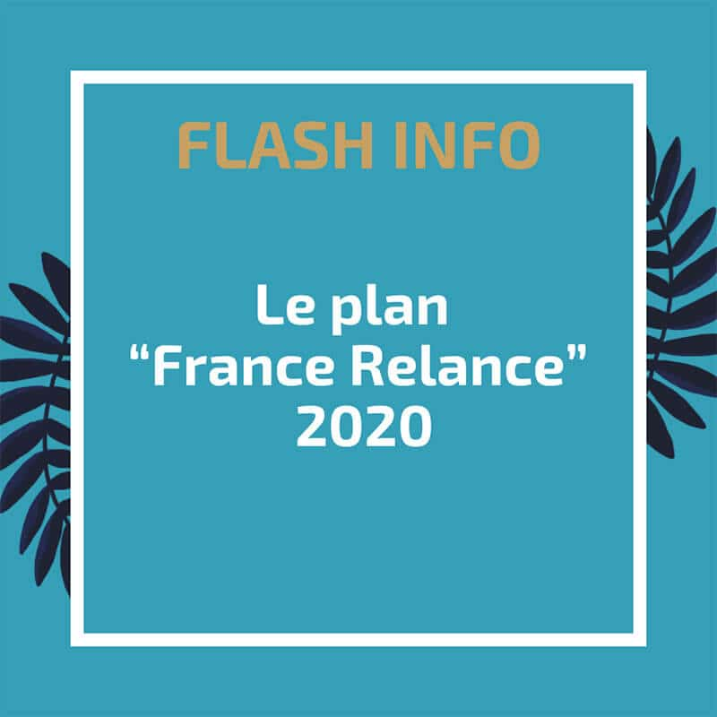 "Le plan ""France Relance"" 2020"