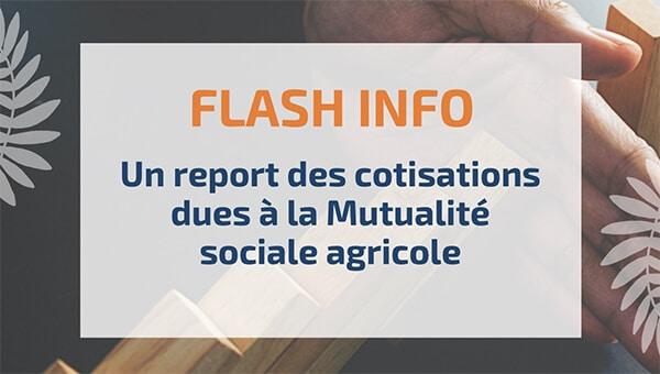 Un report des cotisations dues à la Mutualité sociale agricole