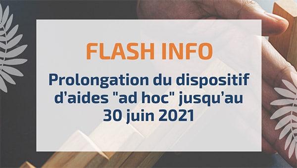 """Prolongation du dispositif d'aides """"ad hoc"""" jusqu'au 30 juin 2021"""